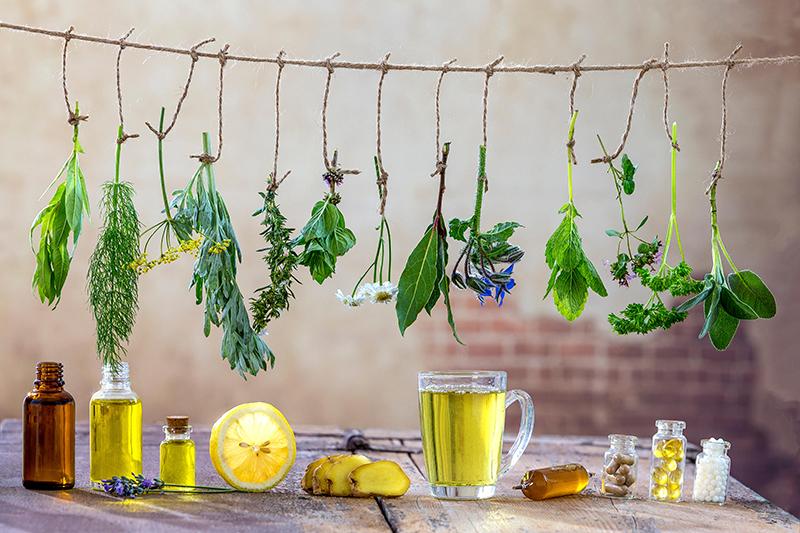 Herbal Medicine - Terra Sacra